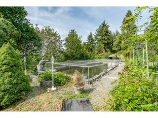 Photo 36: 5225 234 Street in Langley: Salmon River House for sale : MLS®# R2484624