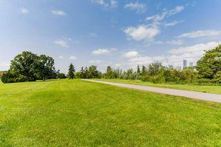 Photo 30: 8771 STRATHEARN Crescent in Edmonton: Zone 18 House for sale : MLS®# E4167060