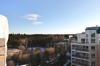 Photo 24: 505 7951 96 Street in Edmonton: Zone 17 Condo for sale : MLS®# E4180268