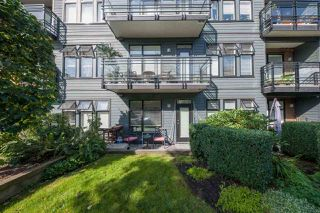 Photo 12: 104 20068 FRASER HIGHWAY Avenue in Langley: Langley City Condo for sale : MLS®# R2494750