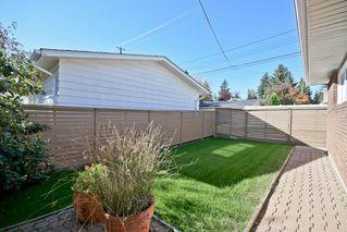 Photo 21: 14003 89 Avenue in Edmonton: Zone 10 House for sale : MLS®# E4168231