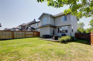 Photo 35: 155 Elgin Way in Calgary: McKenzie Towne Detached for sale : MLS®# A1017174