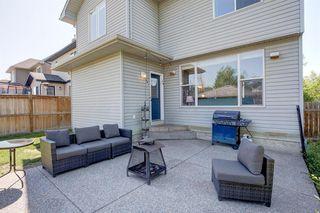 Photo 33: 155 Elgin Way in Calgary: McKenzie Towne Detached for sale : MLS®# A1017174