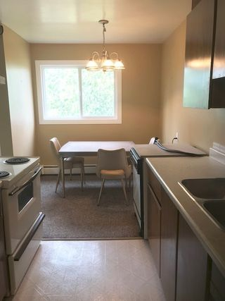 Photo 4: 68 11255 31 Avenue in Edmonton: Zone 16 Condo for sale : MLS®# E4213054