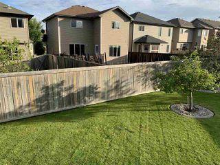 Photo 15: 5831 166 Avenue in Edmonton: Zone 03 House for sale : MLS®# E4217769