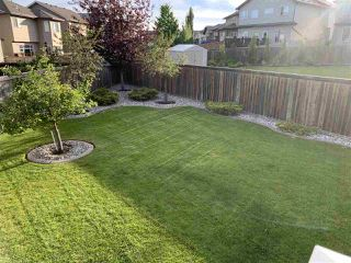 Photo 18: 5831 166 Avenue in Edmonton: Zone 03 House for sale : MLS®# E4217769