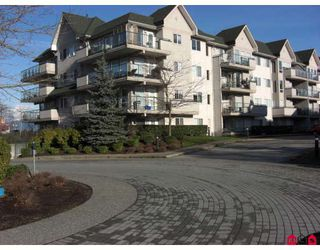"Photo 1: 204 33738 KING Road in Abbotsford: Poplar Condo for sale in ""COLLEGE PARK"" : MLS®# F2800997"