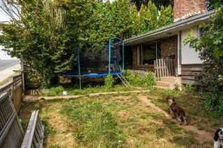 Photo 3: 31613 MARSHALL Road in Abbotsford: Poplar House for sale : MLS®# R2396910
