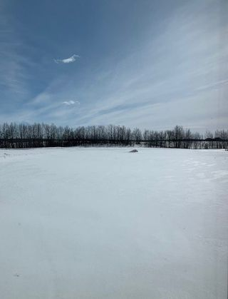 Photo 28: 430 50450 RGE RD 234: Rural Leduc County House for sale : MLS®# E4193665