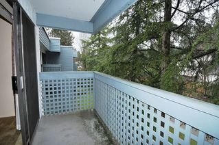 "Photo 7: 404 601 NORTH Road in Coquitlam: Coquitlam West Condo for sale in ""THE WOLVERTON"" : MLS®# R2460723"