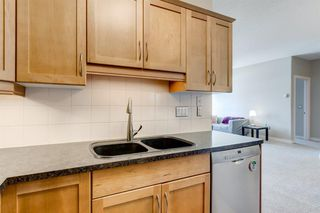 Photo 19: 215 3111 34 Avenue NW in Calgary: Varsity Apartment for sale : MLS®# A1041568