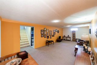 Photo 19: 3008 105 Avenue in Edmonton: Zone 23 House for sale : MLS®# E4169414