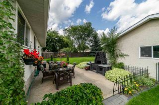 Photo 24: 3008 105 Avenue in Edmonton: Zone 23 House for sale : MLS®# E4169414