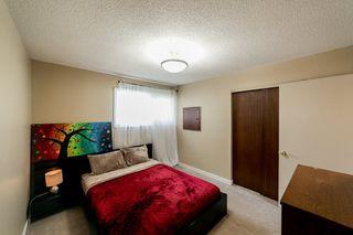 Photo 15: 6215 152 Avenue in Edmonton: Zone 02 House for sale : MLS®# E4172076