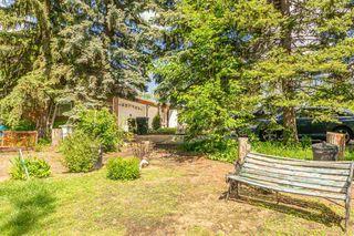 Photo 36: 3 52257 Range Road 231: Rural Strathcona County House for sale : MLS®# E4187539