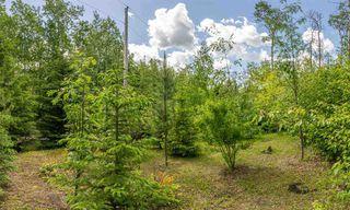 Photo 38: 3 52257 Range Road 231: Rural Strathcona County House for sale : MLS®# E4187539