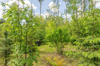 Photo 37: 3 52257 Range Road 231: Rural Strathcona County House for sale : MLS®# E4187539