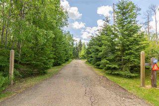 Photo 4: 3 52257 Range Road 231: Rural Strathcona County House for sale : MLS®# E4187539