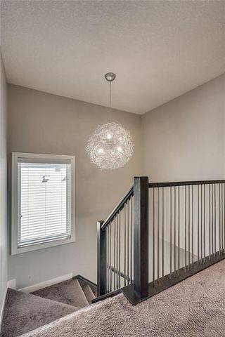 Photo 30: 4029 79 Street NW in Calgary: Bowness Semi Detached for sale : MLS®# C4300255