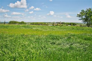 Photo 44: 274103 112 Street W: Rural Foothills County Detached for sale : MLS®# C4301345