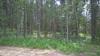 Photo 6: 5 51410 RGE RD 271: Rural Parkland County Rural Land/Vacant Lot for sale : MLS®# E4203574
