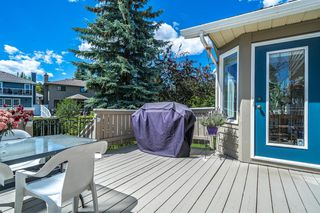 Photo 44: 1227 DEER RIVER Circle SE in Calgary: Deer Run Detached for sale : MLS®# A1012859