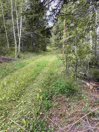 Photo 9: 118, 453041 Hwy 771: Rural Wetaskiwin County Cottage for sale : MLS®# E4212326