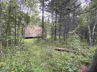 Photo 8: 118, 453041 Hwy 771: Rural Wetaskiwin County Cottage for sale : MLS®# E4212326