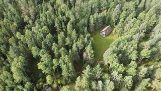 Photo 17: 118, 453041 Hwy 771: Rural Wetaskiwin County Cottage for sale : MLS®# E4212326