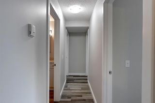 Photo 13: 201 14808 26 Street NW in Edmonton: Zone 35 Condo for sale : MLS®# E4166121