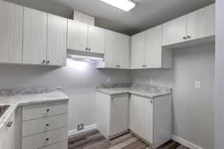 Photo 8: 201 14808 26 Street NW in Edmonton: Zone 35 Condo for sale : MLS®# E4166121