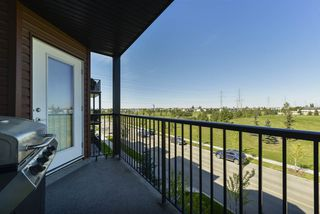 Photo 26: 321 400 Silver Berry Road in Edmonton: Zone 30 Condo for sale : MLS®# E4172229