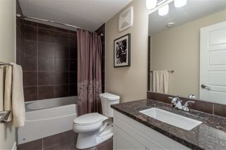 Photo 20: 2116 90 Street in Edmonton: Zone 53 House for sale : MLS®# E4184210
