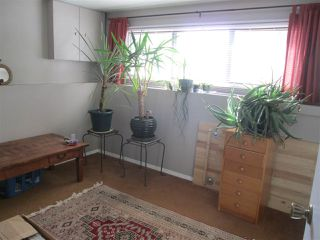 Photo 18: 7817 26 Avenue in Edmonton: Zone 29 House for sale : MLS®# E4189316