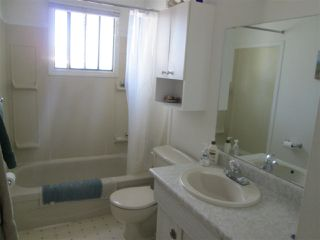 Photo 12: 7817 26 Avenue in Edmonton: Zone 29 House for sale : MLS®# E4189316