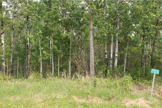 Photo 4: 703 57304   RGE RD 25: Rural Barrhead County Rural Land/Vacant Lot for sale : MLS®# E4197098