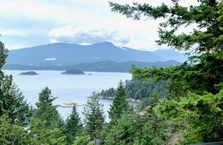 Photo 6: 1685 WHITE SAILS Drive: Bowen Island House for sale : MLS®# R2482164
