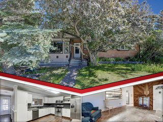 Main Photo: 8340 Bowness Road NW in Calgary: Bowness Detached for sale : MLS®# A1020175