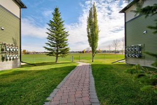 Photo 23: 1003 140 Sagewood Boulevard SW: Airdrie Row/Townhouse for sale : MLS®# A1040152