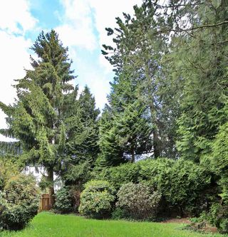 Photo 6: 2955 CAMROSE Drive in Burnaby: Montecito House for sale (Burnaby North)  : MLS®# R2510982