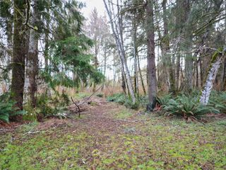 Photo 12: 7093 West Coast Rd in : Sk West Coast Rd House for sale (Sooke)  : MLS®# 862559