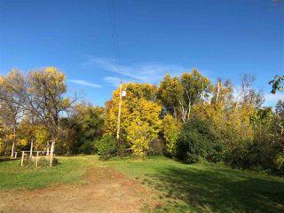 Photo 3: 51320 RR 261: Rural Parkland County House for sale : MLS®# E4175337