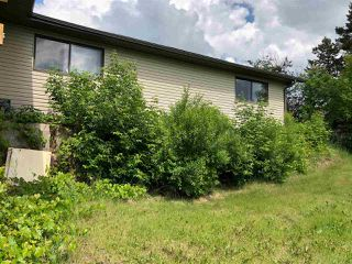 Photo 3: 51320 RR 261: Rural Parkland County House for sale : MLS®# E4175337