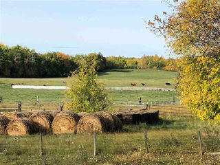 Photo 2: 51320 RR 261: Rural Parkland County House for sale : MLS®# E4175337