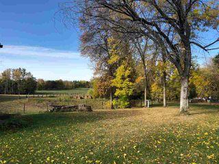 Photo 7: 51320 RR 261: Rural Parkland County House for sale : MLS®# E4175337