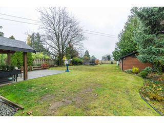 Photo 16: 32720 PANDORA Avenue in Abbotsford: Abbotsford West House for sale : MLS®# R2419567