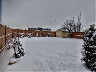 Photo 19: 3203 35 Street in Edmonton: Zone 29 House for sale : MLS®# E4184093