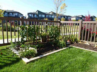 Photo 41: 82 7503 GETTY Gate in Edmonton: Zone 58 Townhouse for sale : MLS®# E4214688