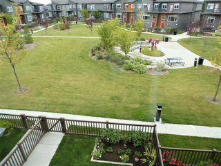 Photo 36: 82 7503 GETTY Gate in Edmonton: Zone 58 Townhouse for sale : MLS®# E4214688