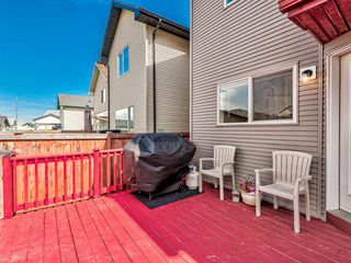 Photo 38: 90 CRAMOND Circle SE in Calgary: Cranston Detached for sale : MLS®# A1017241